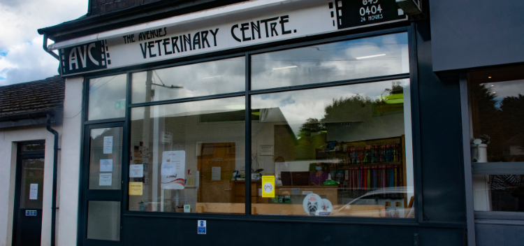 Independent Vets in Rutherglen, Glasgow