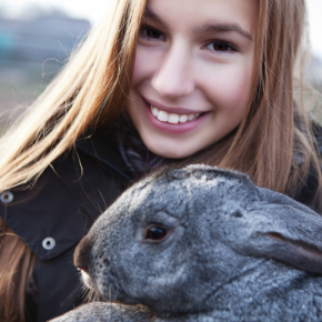 What to put in your rabbit's first aid kit